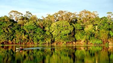 Rio Urubu, en Amazonie.