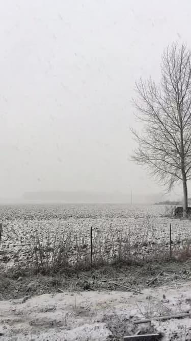 Neige à gros flocons à Francilly-Selency (Aisne) - Témoins BFMTV