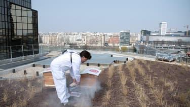 Beaugrenelle a mis des ruches sur son toit.