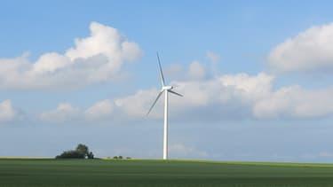 EDF doit racheter l'électricité d'origine éolienne à 82 euros le mégawattheure.