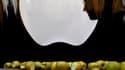 Hommage à Saint Pétersbourg à Steve Jobs. Le cofondateur et patron emblématique d'Apple a eu droit, comme jamais un chef d'entreprise, à un hommage planétaire, où chefs d'Etat, patrons, concurrents directs ou simples clients ont salué la mémoire d'une icô