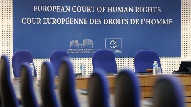 La Cour européenne des droits de l'Homme (CEDH) de Strasbourg a condamné jeudi les Pays-Bas pour n'avoir pas protégé des sources journalistiques dans une affaire portant sur des documents issus des services secrets. /Photo prise le 4 septembre 2012/REUTER
