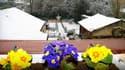 Fleurs et neige se côtoient dans l'Eure en ce début avril.