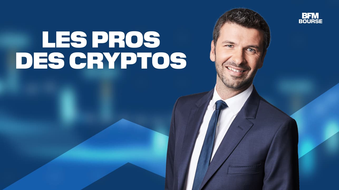 Les Pros des Cryptos