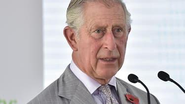 Le prince Charles en visite à Dubaï en novembre 2016.