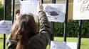 Une élève accrochant un message de soutien à la grille de la préfecture d' Ajaccio en Corse, le 8 janvier