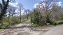 L'entrée boisée du grand domaine de Domenac, qui croise la départementale D42 à Sénaillac-Lauzès.