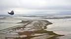 Champs inondés entre La Rochelle et L'Aiguillon-sur-Mer après le passage de la tempête Xynthia. Le gouvernement va débloquer plus de 26 millions d'euros en faveur des agriculteurs et ostréiculteurs affectés par la catastrophe, dont le bilan officiel est d