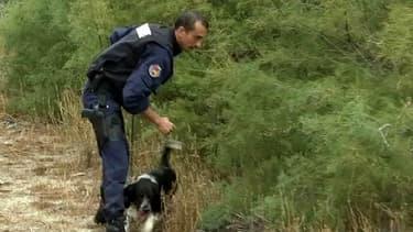 Policier d'une équipe cynophile, mardi, près de Perpignan.