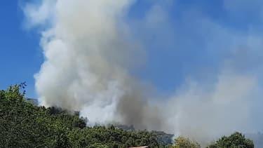 Feu de forêt a Seillans (Var) - Témoins BFMTV