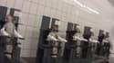 Des singes attachés dans ce laboratoire de Hambourg en Allemagne.