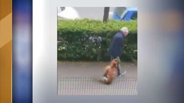 Image de l'individu en train de traîner l'animal dans les rues d'Argenteuil.