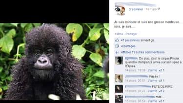 Cette publication qui compare un singe à Christiane Taubira a été reposté sur son mur par une élue UMP.