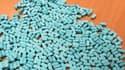 Des centaines de pilules d'ecstasy lors d'une saisie des douanes françaises, en février dernier.