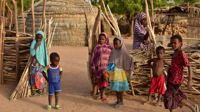 Des enfants au Niger, l'un des pays au plus fort taux de fécondité au monde. (photo d'illustration)