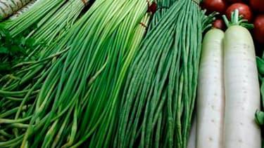 Nicolas Sarkozy réunit ce lundi agriculteurs, distributeurs et industriels de l'agroalimentaire avec pour objectif le rééquilibrage de leurs relations commerciales au profit des producteurs afin d'éviter des crises. /Photo d'archives/REUTERS