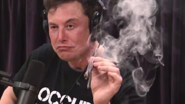 Elon Musk lors de l'interview avec Joe Regan publiée le 6 septembre.