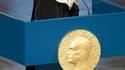 La militante yéménite des droits humains qui a reçu le prix Nobel de la paix 2011 a reproché la communauté internationale d'être indifférente vis-à-vis de la révolution dans son pays. Dans son discours d'acceptation à Oslo, Tawakul Karman a estimé que les