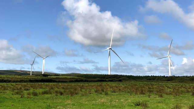 """Une trentaine d'associations et collectifs picards et du Nord-Pas-de-Calais dénoncent """"une saturation"""" de leur région en éoliennes"""