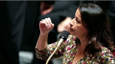 Le projet de loi sur les logements sociaux porté par la minsitre Cécile Duflot a été voté à l'Assemblée nationale