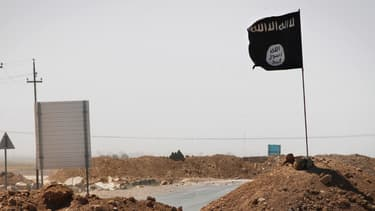"""Le groupe jihadiste Daesh recule aujourd'hui en Irak et en Syrie, où la coalition menée par Washington """"veut supprimer ses centres de pouvoir"""" dans les villes de Raqqa et Mossoul, ont affirmé ce mercredi Paris et Washington - Mercredi 20 janvier 2016"""