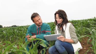 Depuis mars 2016, BASF teste Maglis, une plateforme en ligne pour accompagner les agriculteurs dans la gestion de leurs cultures et de la commercialisation de leurs productions, en fonction de données agronomiques et météorologiques.