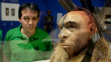 Un visiteur regarde une reconstitution scientifique du visage d'un homme de Néandertal, au Musée de l'évolution humaine de Burgos le 10 juin 2014