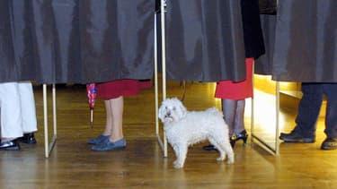 Près de trois Français sur dix seraient prêts à voter pour une liste Front national aux élections municipales de mars.