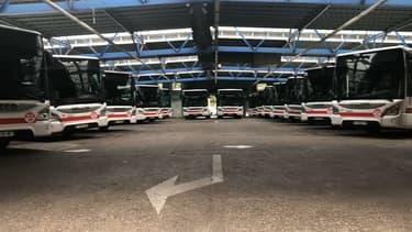 Des bus TCL.