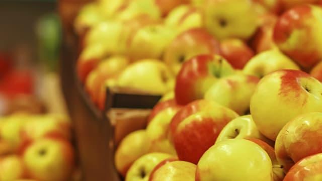Certains fruits contiennent des résidus de plusieurs pesticides.