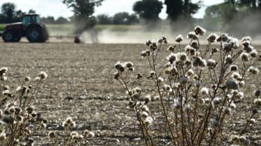 Une exploitation agricole - Photo d'illustration
