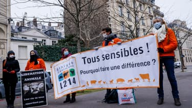 Des membres de l'association L214 aux côtés de militants de formations politiques défendant la cause animale aux abords de l'Assemblée nationale le 26 janvier 2021