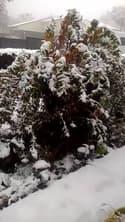 Puy-de-Dôme : neige à Royat - Témoins BFMTV