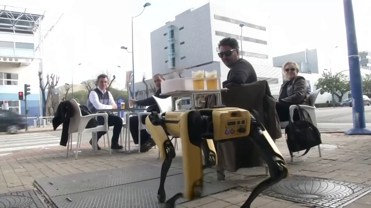 À Séville, un robot sert les clients d'un bar pour éviter les contacts
