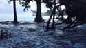 Une haute marée pénètre à l'intérieur des terres aux îles Marshall, le 3 mars 2014. L'archipel pourrait disparaître à cause de la montée des eaux.