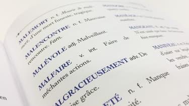Extrait des Mots disparus de Pierre Larousse. (Editions Larousse, 2017)