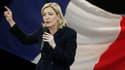 """Marine Le Pen, vice-présidente du Front national dont elle pourrait prendre la tête ce week-end, fait l'objet d'une enquête préliminaire pour """"incitation à la haine raciale"""", pour avoir comparé la présence de musulmans priant dans la rue à l'Occupation. /"""