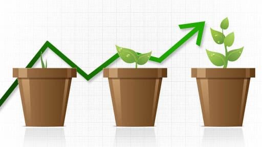 Trois reportages sur les bonnes pratiques green en entreprise.