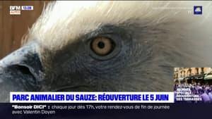 Le parc animalier du Sauze rouvrira le 5 juin