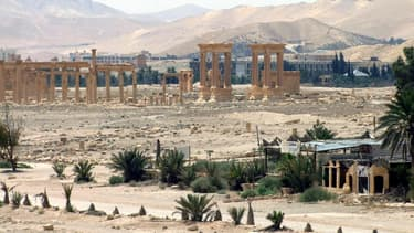 Le site archéologique de Palmyre fait l'objet de toutes les attentions alors que l'Etat islamique tente de s'emparer de la ville