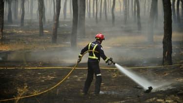 Un incendie ravage un parc naturel espagnol depuis samedi.