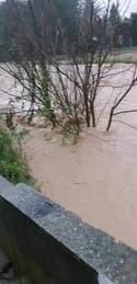 Vaucluse : inondations à Pertuis - Témoins BFMTV