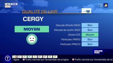 BFM Régions vous informe sur la qualité de l'air et les risques d'allergies.