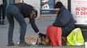 Un sans-abri et son animal le 29 décembre 2014, à Lyon.