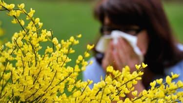 Allergies aux pollens (PHOTO D'ILLUSTRATION).