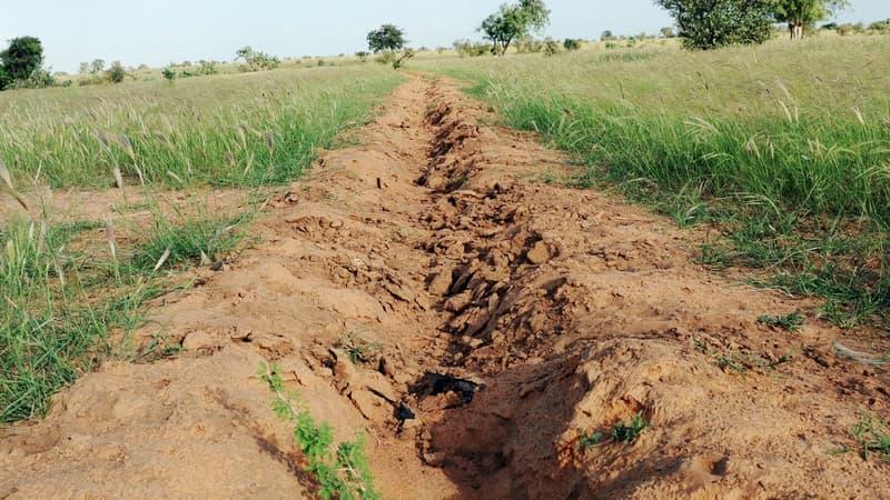 """Environnement: qu'est ce que le projet de """"Grande muraille verte"""" en Afrique?"""
