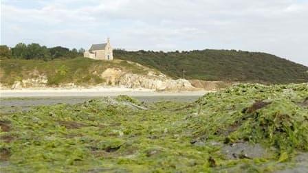 La plage Saint-Maurice, sur la commune de Morieux, dans les Côtes d'Armor, fermée au public en raison de la présence d'algues vertes. Soupçonnées d'être à l'origine de la mort de 36 sangliers sur cette plage en juillet, ces algues empoisonnent le littoral