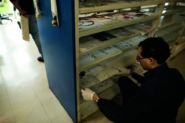 Des documents récupérés sont mis à sécher par un archiviste, aux archives de Paris