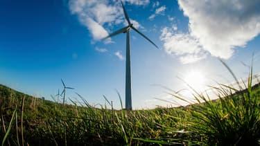 En exploitant un second parc éolien, la filiale canadienne d'Ikea va produire plus de quatre fois l'énergie consommée par ses magasins. (image d'illustration)