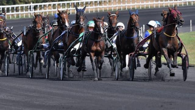 Peloton de chevaux de course à Vincennes